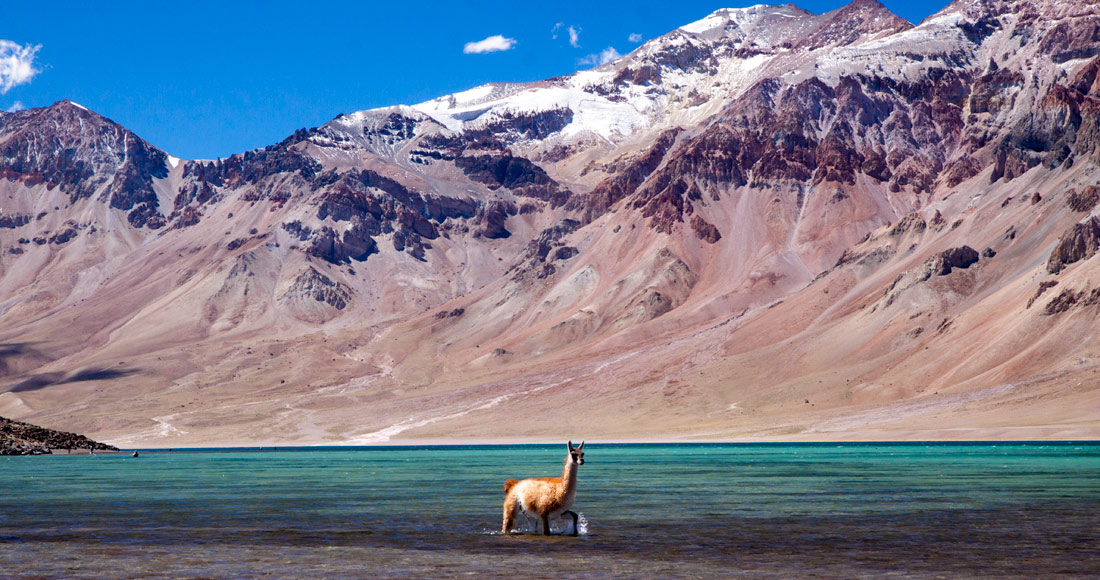 Laguna del Diamante, 4x4 Private Andes Tour, Mendoza, Private excursion, tour privé, henri Guillaumet, volcan Maipo, Maipo, Andes, guanaco, condor