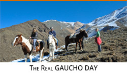 Real gaucho day