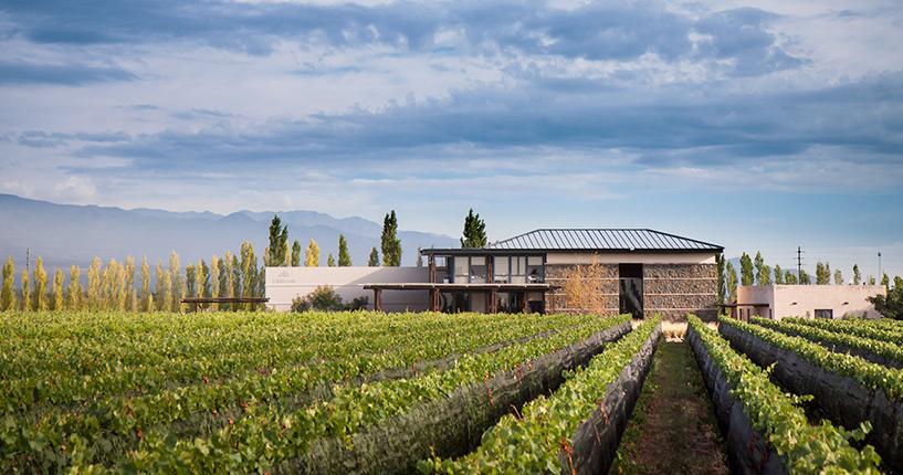 The Tintos lujan de cuyo premium wine tour Caelum Mendoza