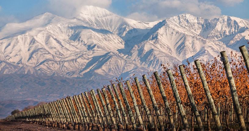 The Tintos lujan de cuyo premium wine tour Finca Decero Mendoza Andes Tupungato Cordon del plata