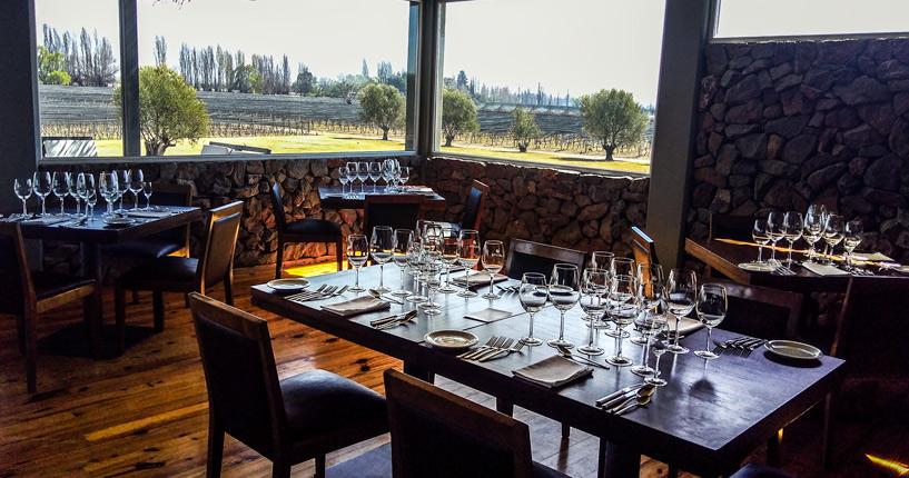 The Tintos lujan de cuyo premium wine tour Mendoza Melipal