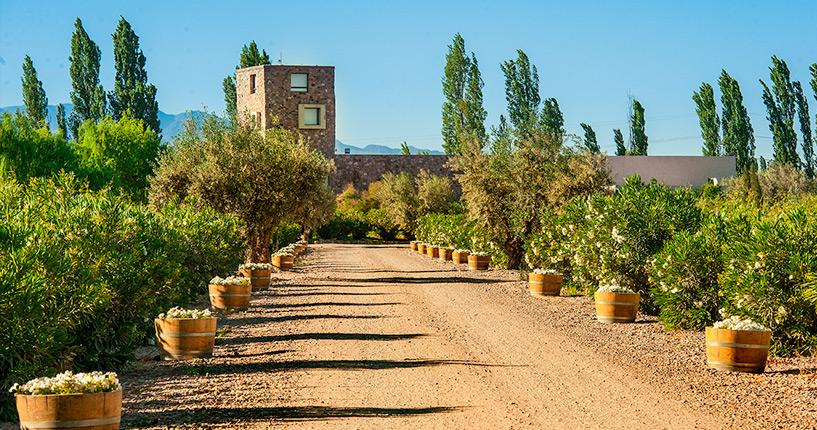 The Tintos lujan de cuyo premium wine tour Renacer Mendoza Lunch, visite de caves, route des vins, mendoza