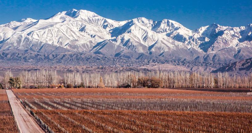 Viva Catena, The Tintos, lujan de cuyo premium wine tour, Casa Vigil, Catena Zapata, Alejandro Vigil, Mendoza