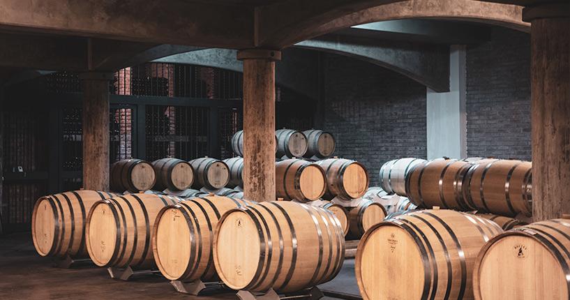 the tintos, exclusive tour, private wine tour, uco valley, mendoza, Tupungato, Hidden winery, prestigious winery, clos de 7, piedra negra, lurton, ultimate wine tour, michel rolland, tupungato divino, Vista Flores, Chacayes, Gualtallary, premium wine tour, clos de siete, bodega, tasting